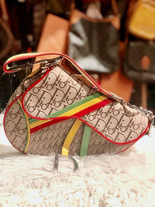 Christian Dior Rasta Saddle Bag