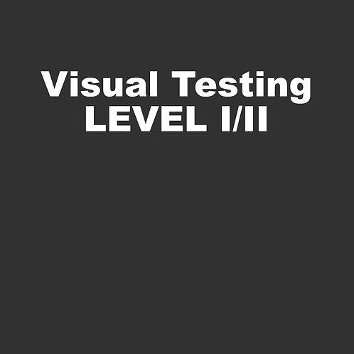 Visual Testing Level I/II - 24 hours