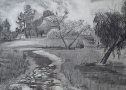 Plein Air Drawing Charcoal