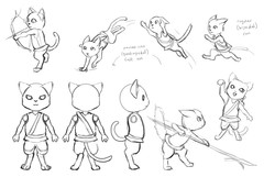 Cat visual development