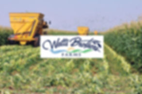 Watt's Brothers Farms logo
