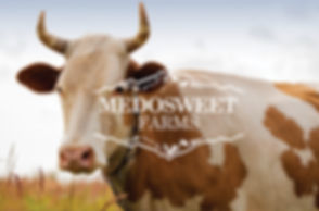 Medosweet Farms logo