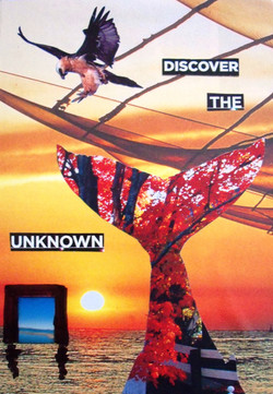 Discover the unknown