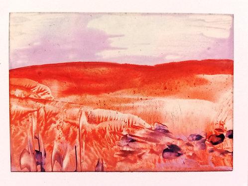 Orange Hills Purple Flowers