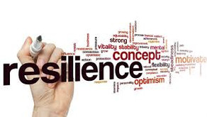 Who is responsible for Workplace Resilience?