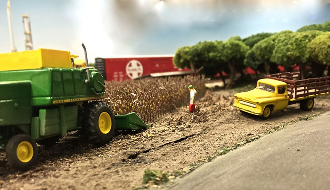 L Photo harvest.jpg