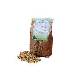 Barley grain, 500 g