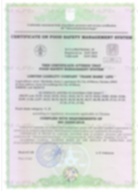 certificate-iso_1.png