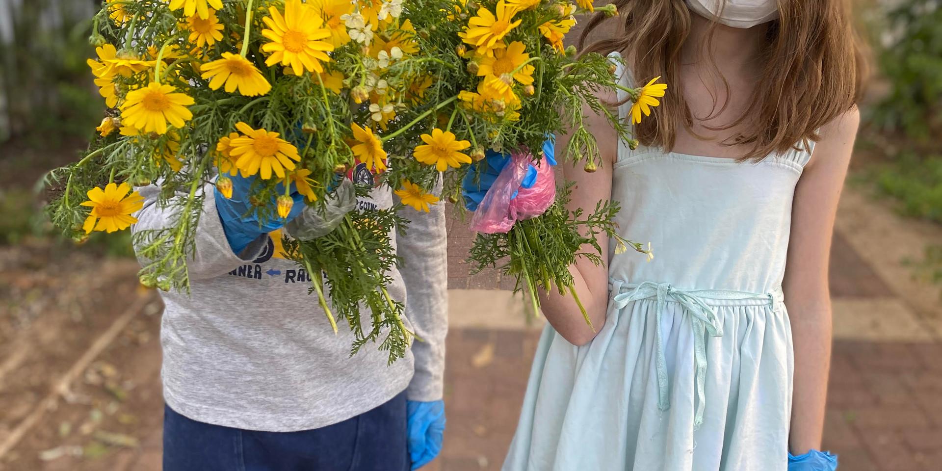 Way of Sunflowers