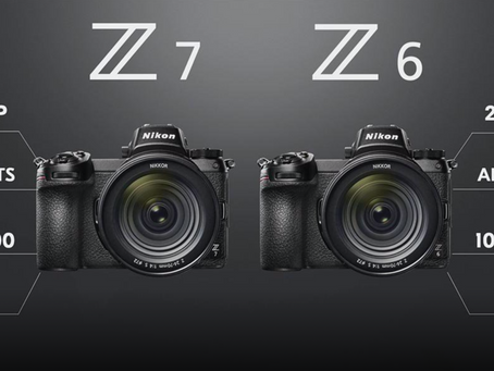 Nikon Z6 - An Amazing Brief Encounter