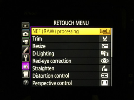 Nikon D850 - In Camera RAW conversion to JPEG