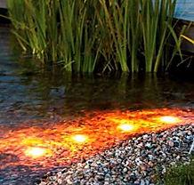 Светильники для прудов и водоемов