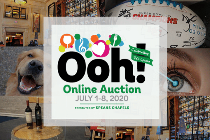 _Ooh Online Auction Email Header (002).p