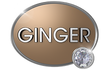 GINGER SHIELD-W FLARE.png
