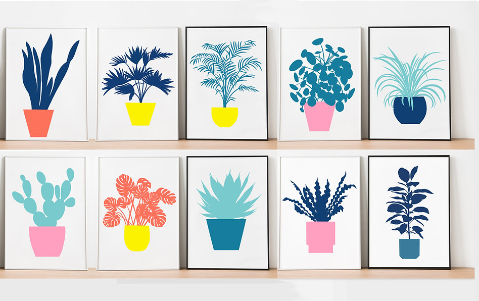 houseplants print collection by Beau Oui