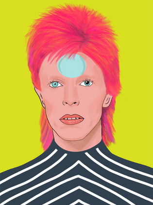 David Bowie 'Reflector'