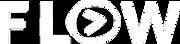 srvison-flow-logo.png