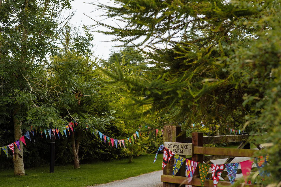 Tree lined track with wooden gate and colourful wedding bunting hanging from the trees.