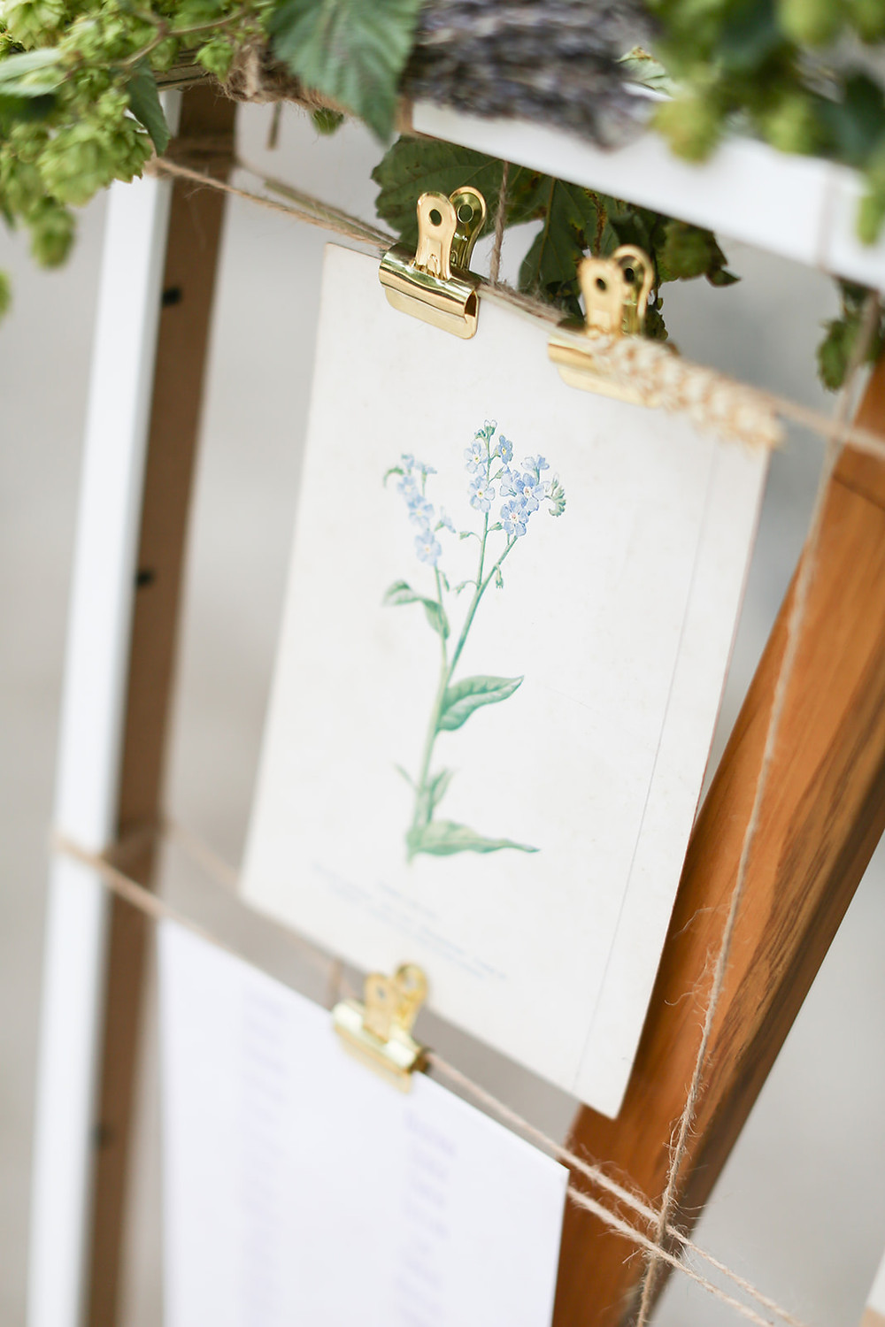Botanical seating plan inspiration for a wedding. Botanical drawings pegged to hessian string on a wooden easel.