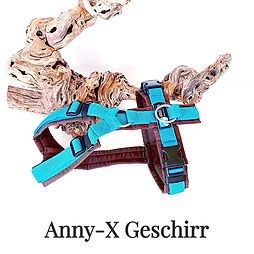 Anny-X Geschirr
