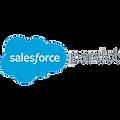 thedigital.support & Salesforce Pardot campaign management