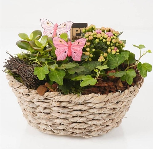 Mothers Day Planted Basket