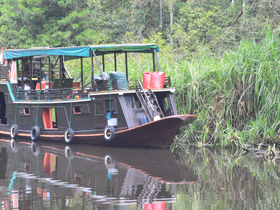 Crazy Kalimantan (Borneo) - Cruising down the Kumai River