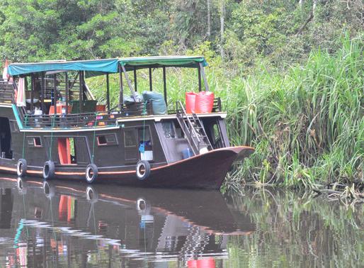 Crazy Kalimantan (Borneo) - Cruising down the Kumai River