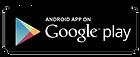 GoogleP.png