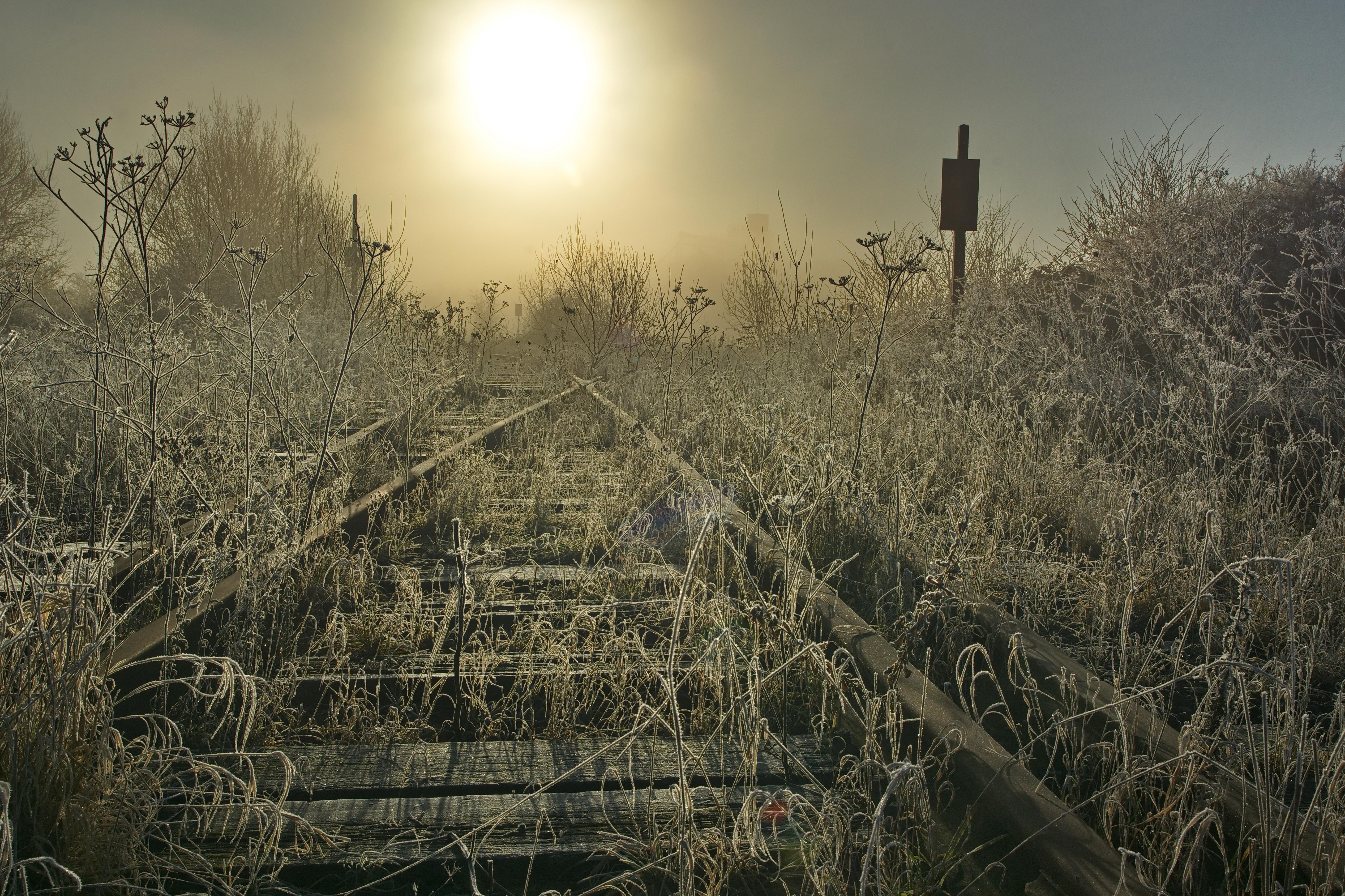 #AM Le gel de la mort