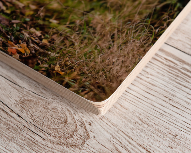 Birchwood block 2.jpg