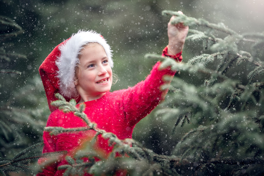 Girl among conifers in the snow. Outdoor Christmas photography, by Somerset photographer Sarah Gibson