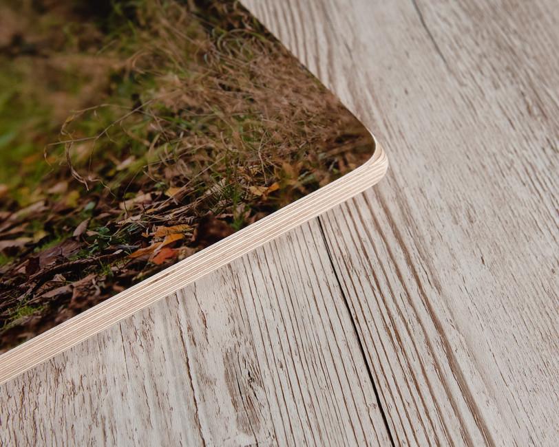 Birch block 3.jpg