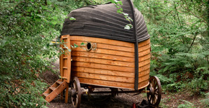 All aboard the Story Boat: shooting a Forestry England event in East Devon