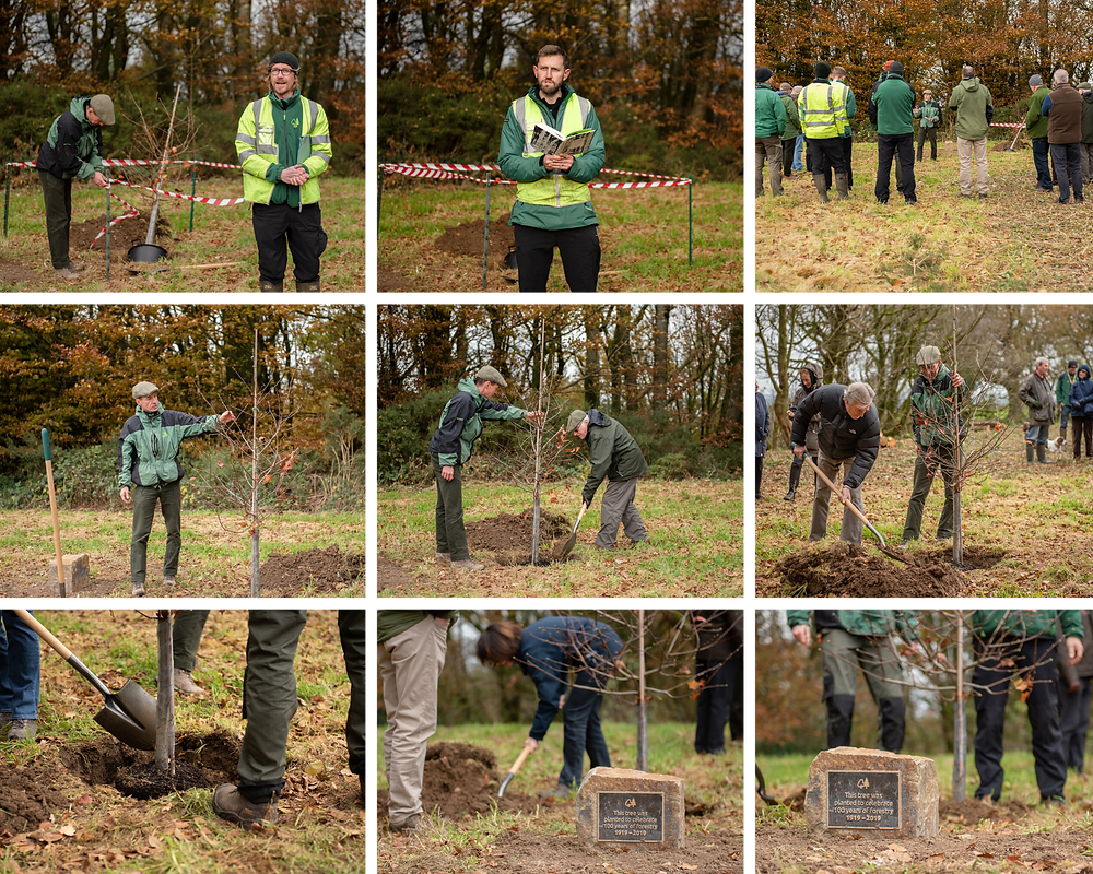 Centenary tree planting at Castle Neroche, Somerset. Taken by Somerset photographer Sarah Gibson