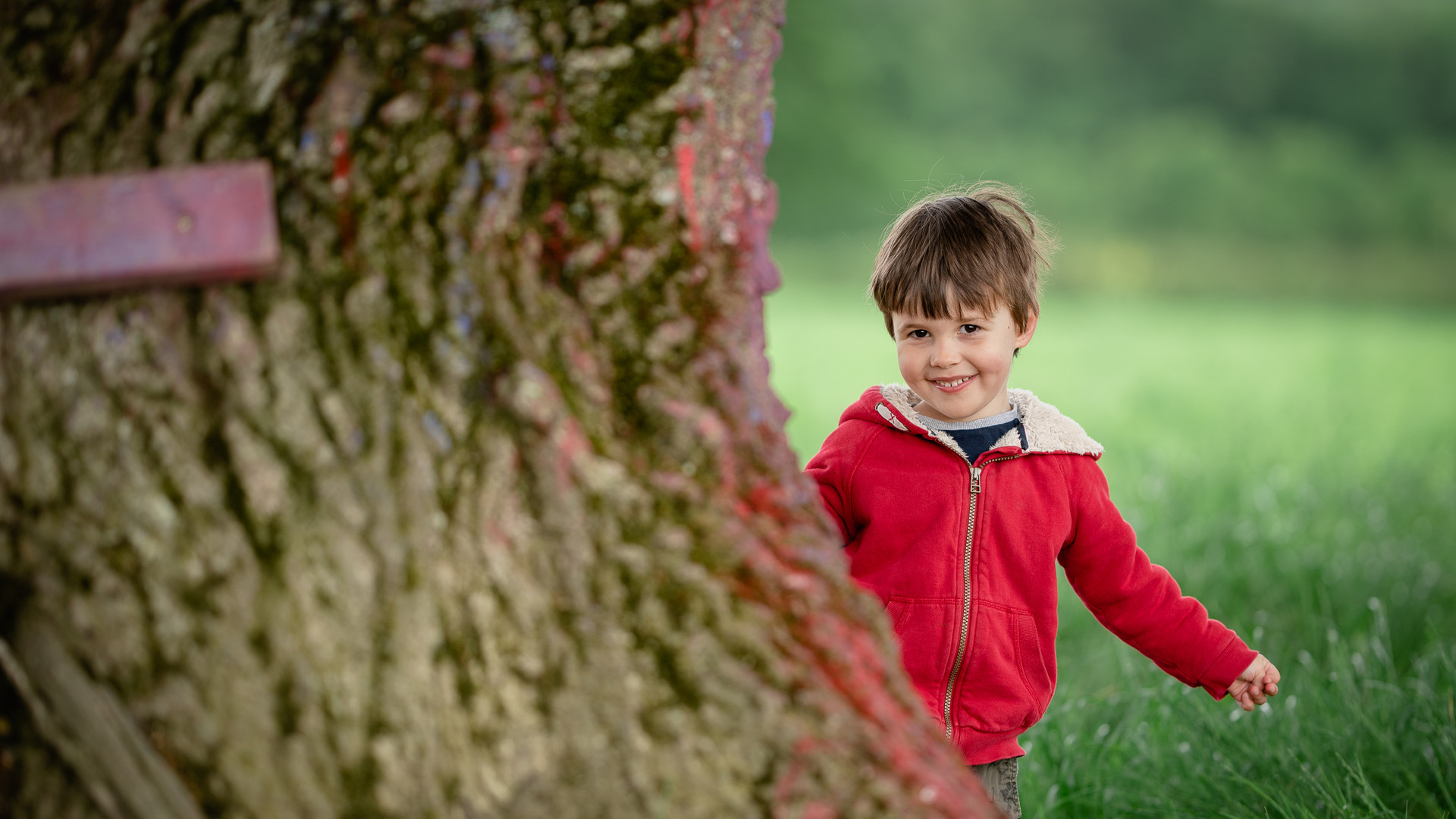 boy peeping around from tree.jpg
