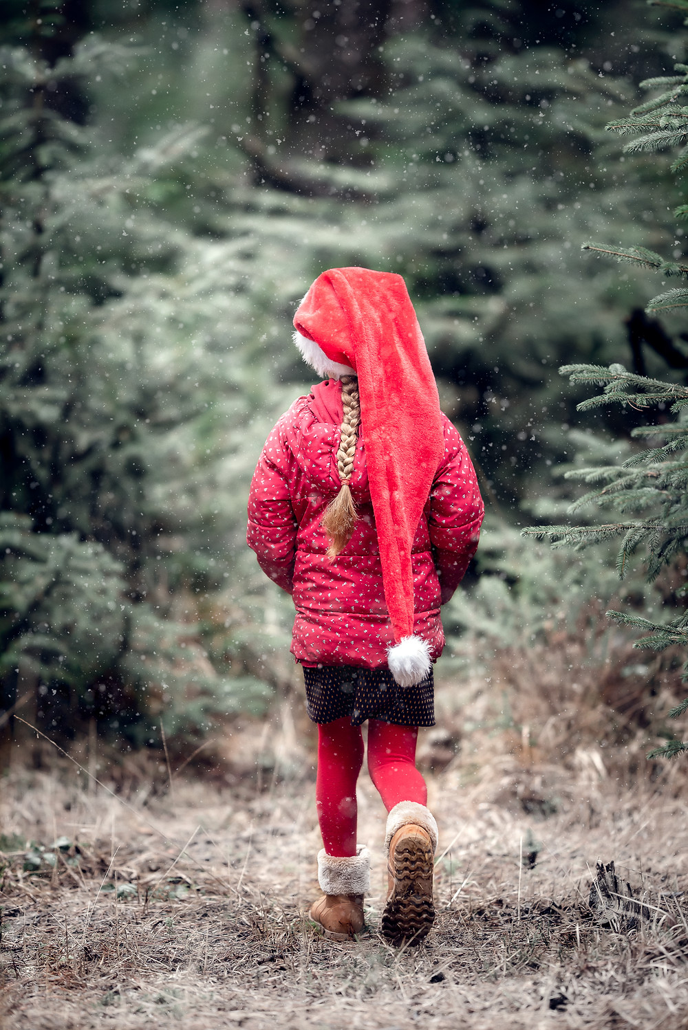 Girl walking into woods in the snow. Outdoor family photography by Somerset photographer Sarah Gibson