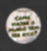 Captura_de_Tela_2019-07-03_às_13.41.02.p