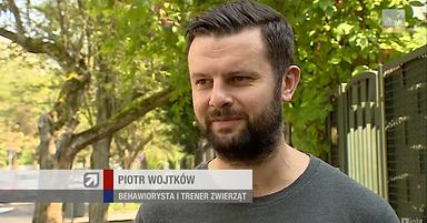Zrzut ekranu 2018-09-13 o 13.20.47.png
