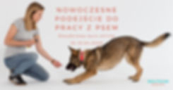 Copy of nowoczesne techniki pracy z psem