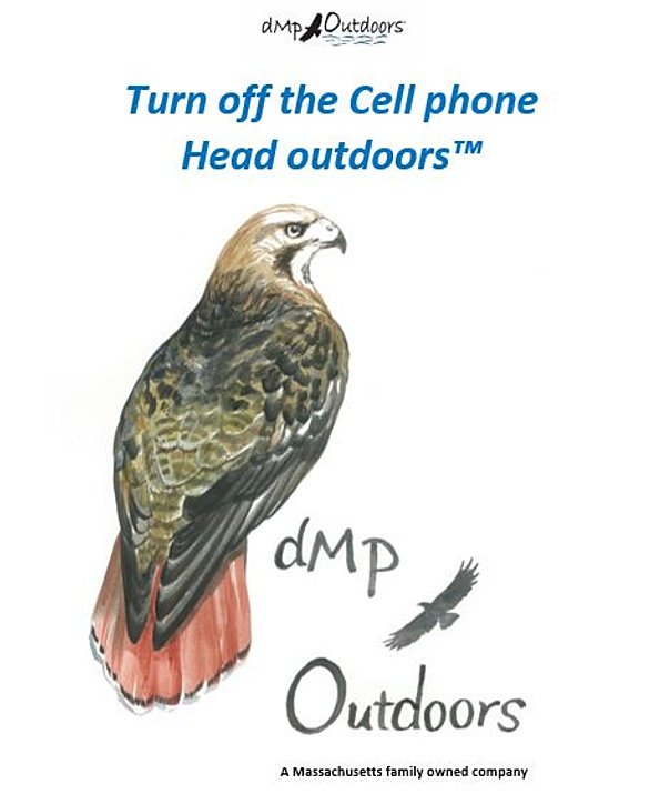 Image result for dmp outdoors