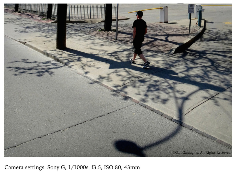Curves, lines & shadows
