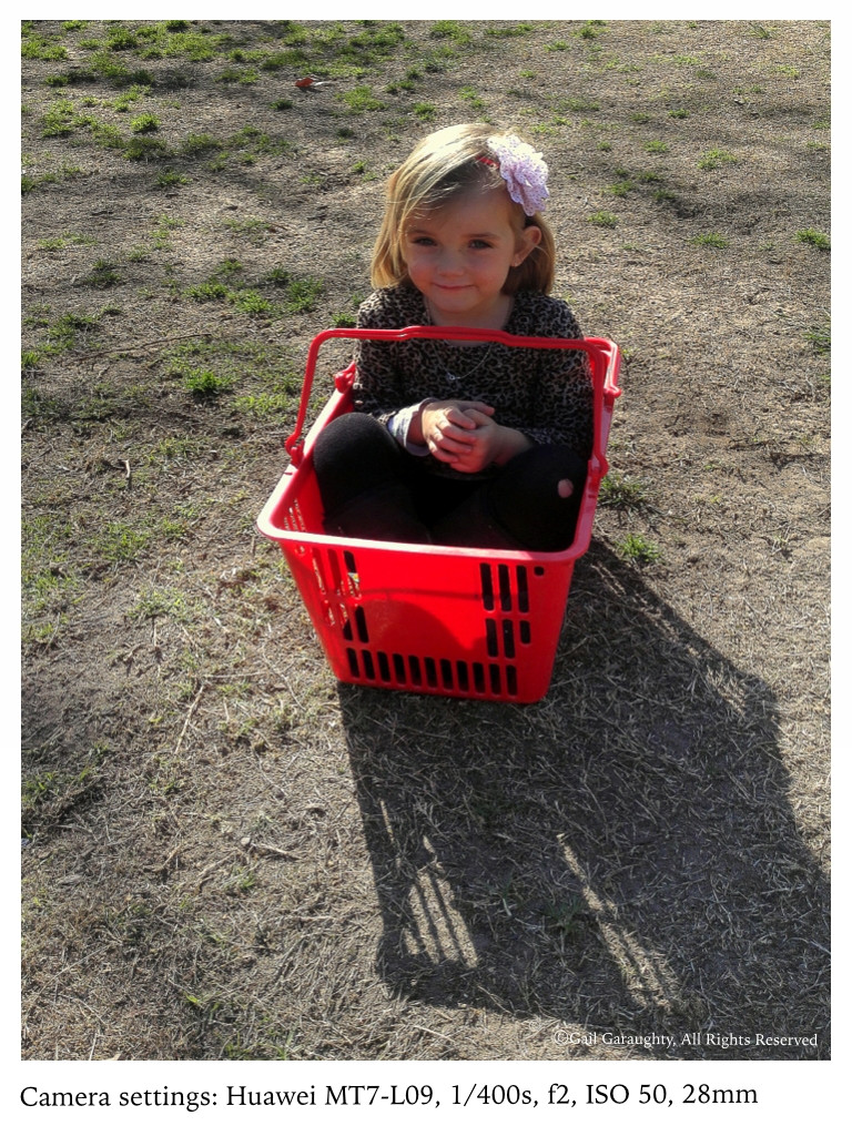 Evie in a basket