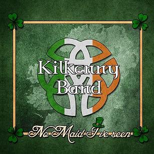 Tim Hocks Kilkenny Band