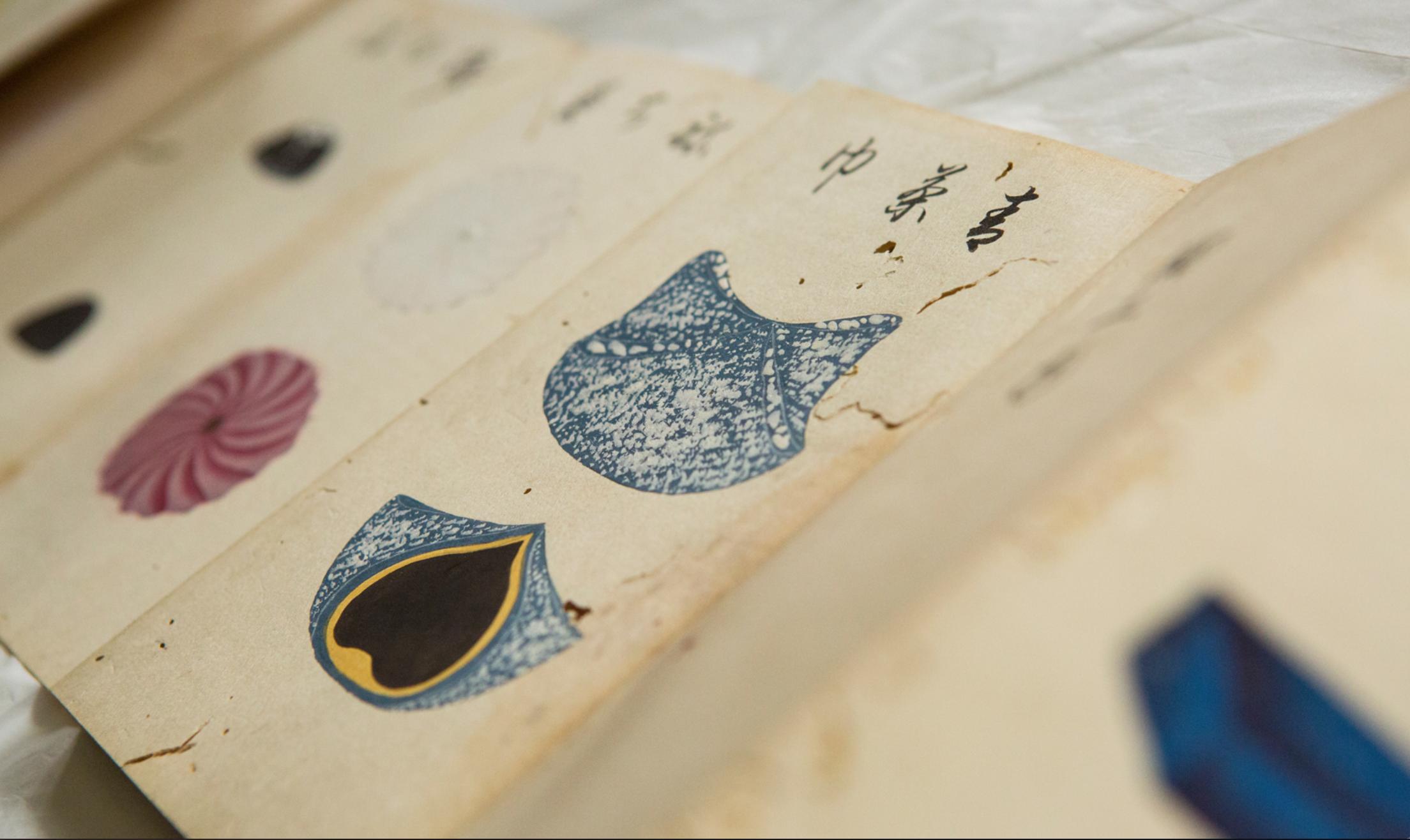 east to west sweets encyclopaedia-japan