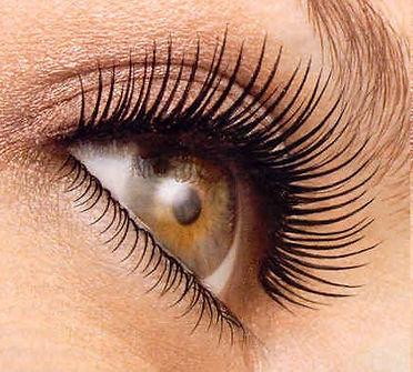 Eyelash-tint.jpeg