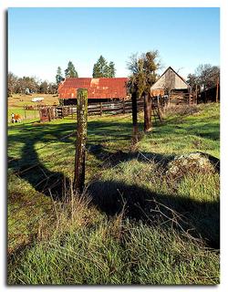 Gumbiner El Dorado ranch 2