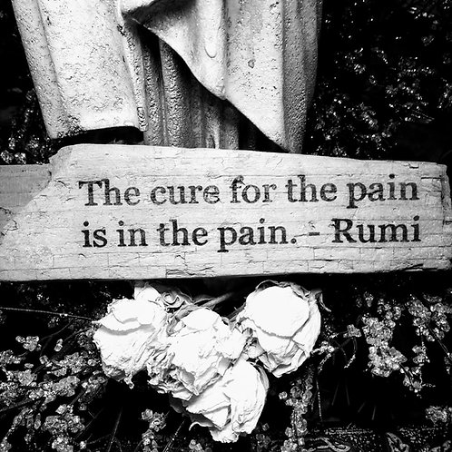 the cure for the pain is in the pain