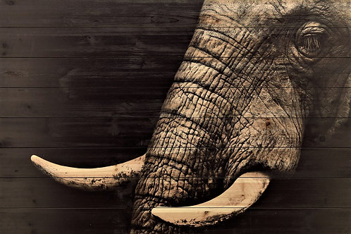 elephant printed on planks of wood 46 x 31*IN STORE PICK UP ONLY*