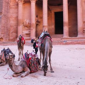 Bate e volta para Petra